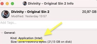 Divinity Original Sin 2 M1 Mac Rosetta 2 support