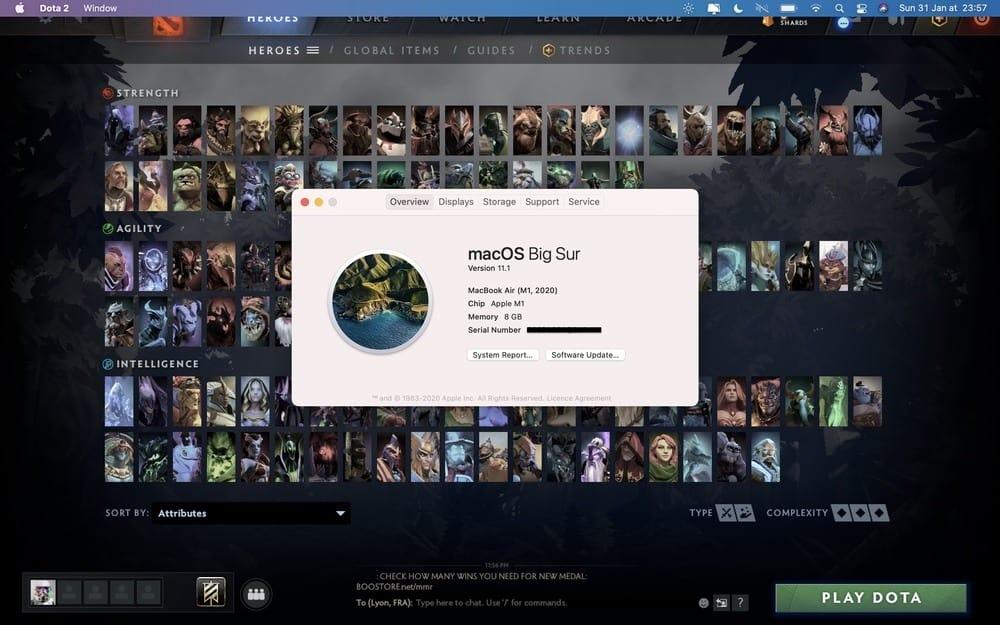 Dota 2 Mac M1 support