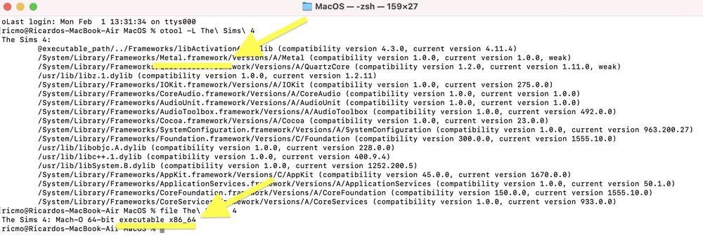 The Sims 4 M1 Mac Rosetta 2 support